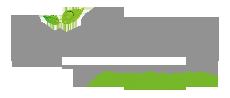 Logo_Bielenda_RGB