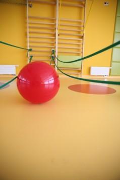 zdjęcie piłki w biomicusie