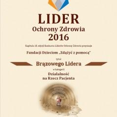 Tytuł Lidera Ochrony Zdrowia 2016